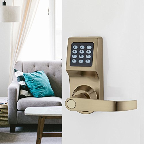 Keyless Electronic Digital Smart Door