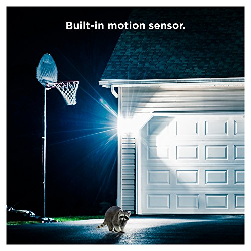 Sengled LED Flood Light with