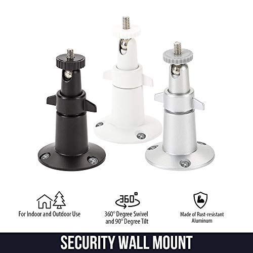 Adjustable Indoor/Outdoor Security Wall Mount